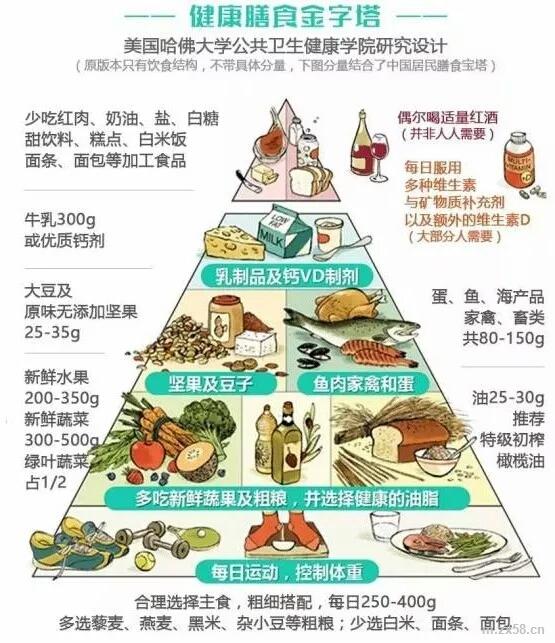 健康膳食金字塔