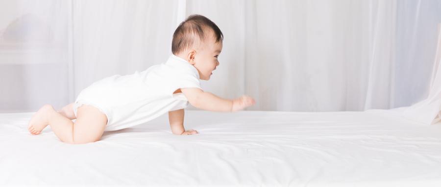 宝宝营养三步走,只想给你最适合的!