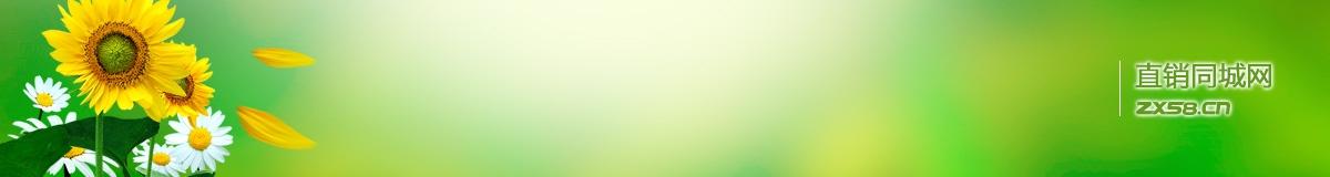 绿之韵专卖店龙老师的事业网站