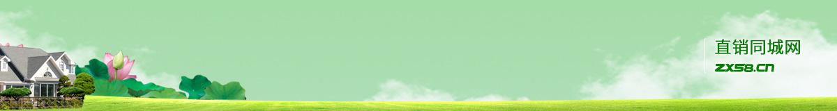 广西梧州九天绿经销商徐老师的个人网站