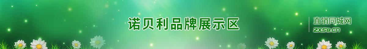 諾貝利網絡平臺