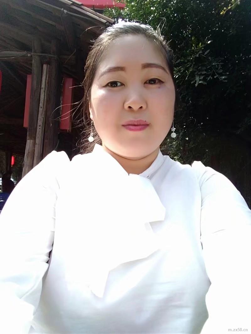 绿叶杨贞菊