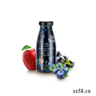 无限极牌蓝莓、黑加仑子复合果汁