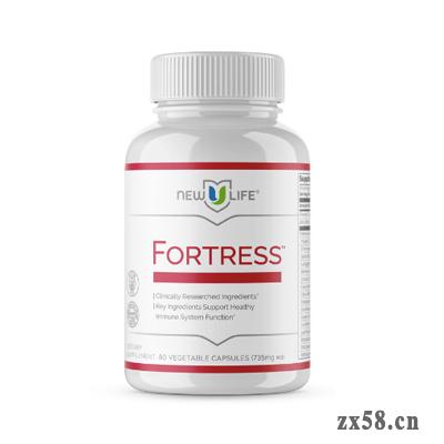 新生命 Fortress™