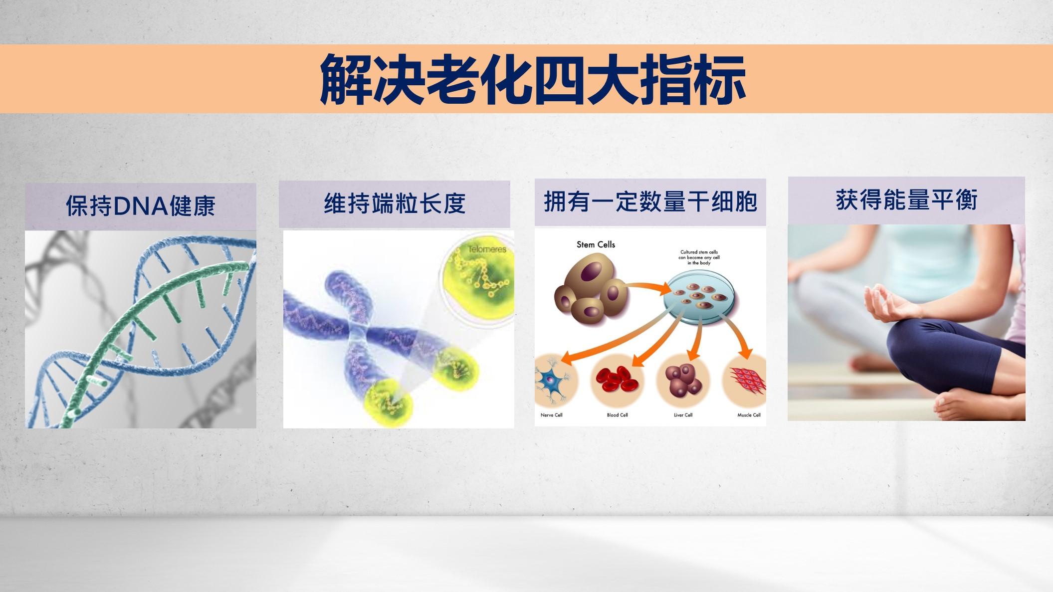 细胞优化系统