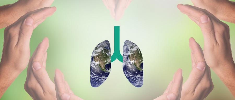 为什么秋天要清肺?