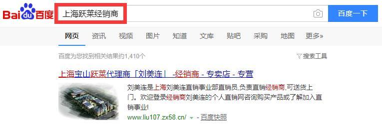 上海跃莱经销商