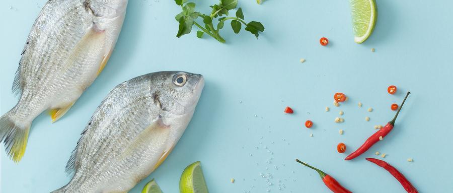 秋季保健养生吃什么鱼