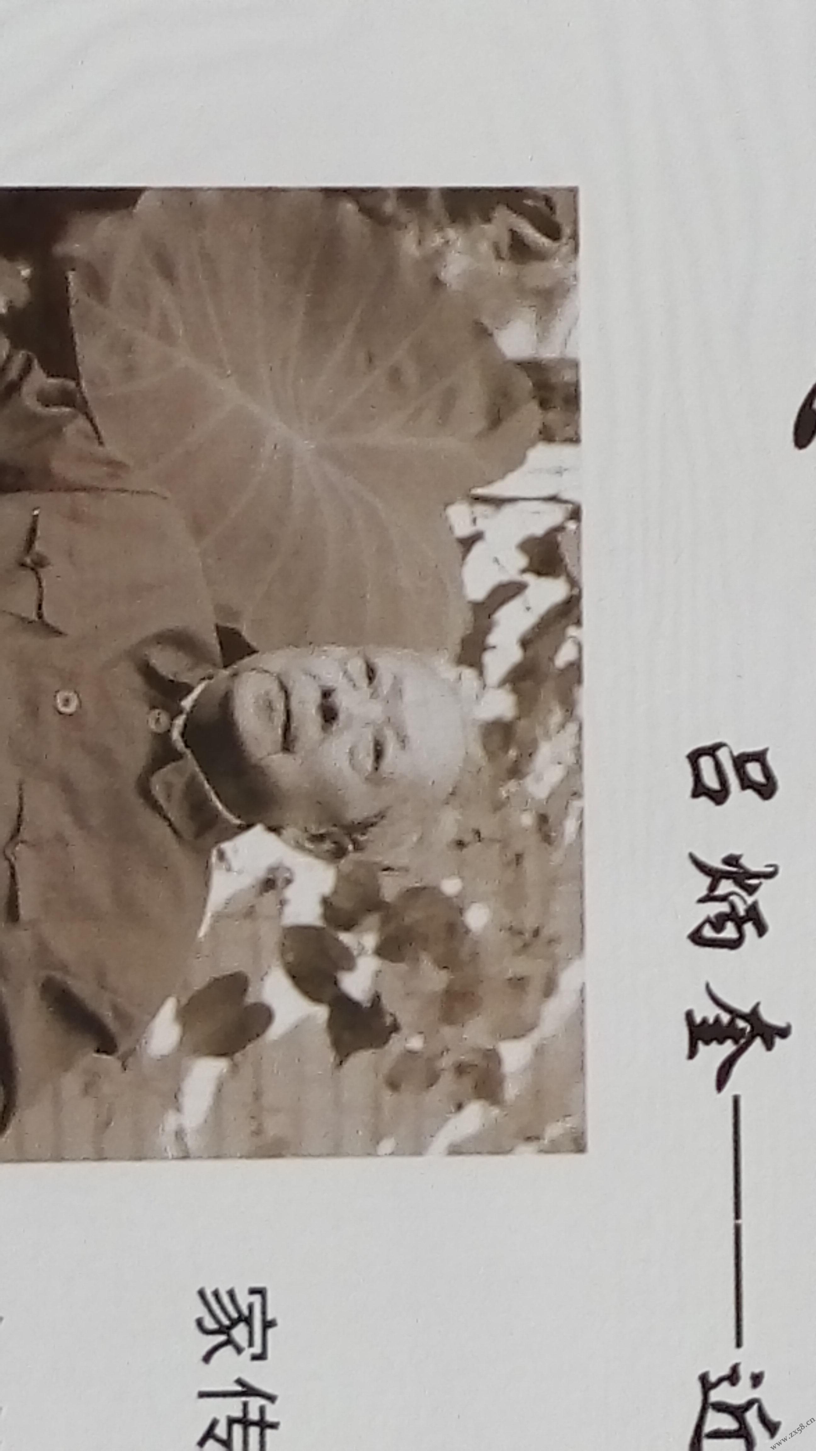 吕炳奎自然医学发